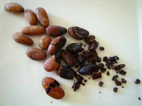 cacao beans in various stages of undress