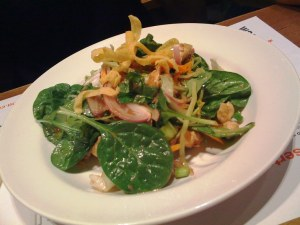 I have to admit, the suzushii chicken salad did look darn appetising, and the deep-fried wonton ribbons were delicious