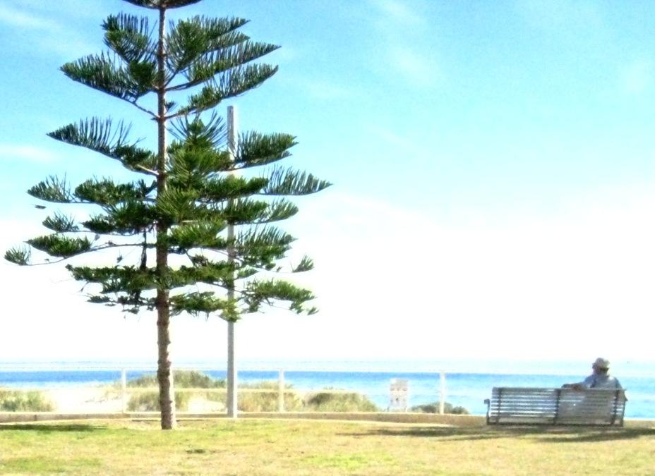 oh i do like to be beside the seaside