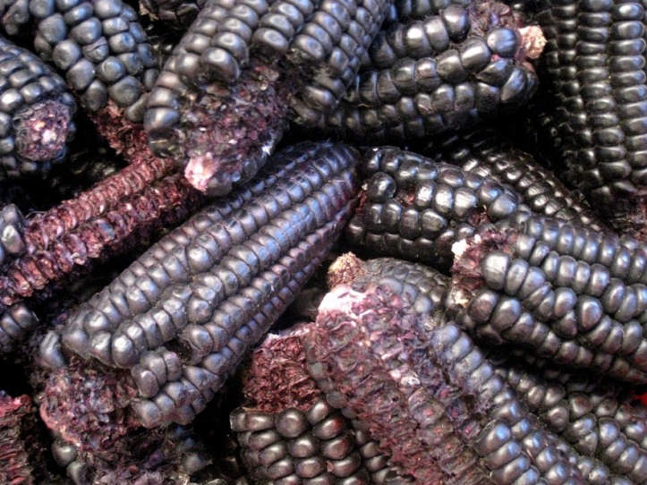 when I visited Chile, this was known as black corn; two years later, extracts are being marketed as purple corn