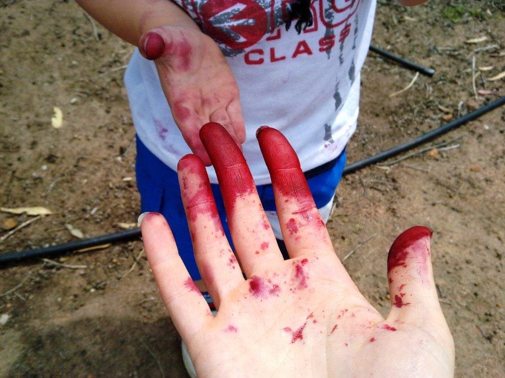 purple fingers