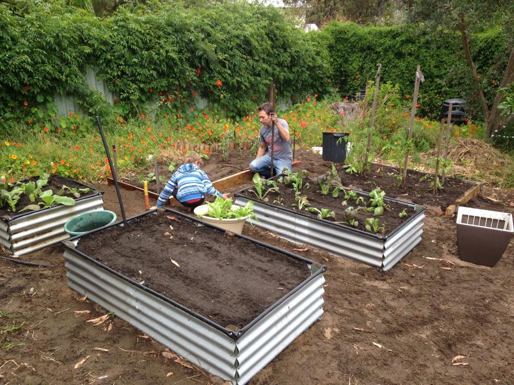 gardenworking